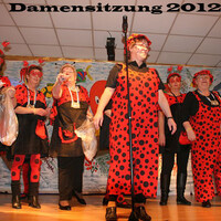 Damensitzung 2012